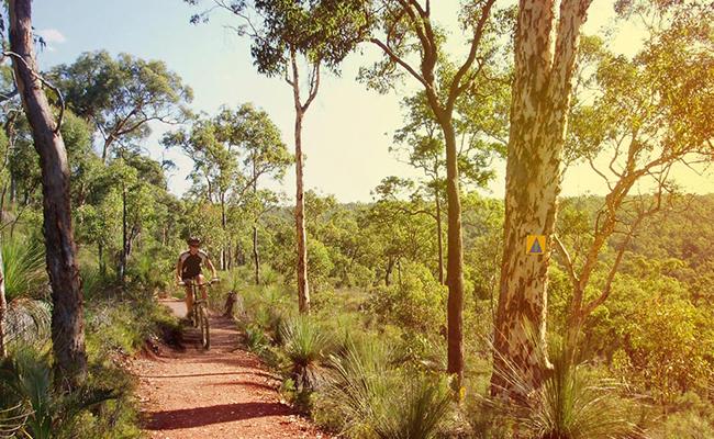 Ruta ciclismo Australia